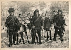 Sami people with reindeer in Lapland