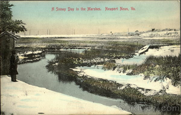 A Snowy Day In The Marshes Newport News Virginia