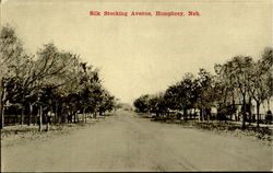 Silk Stocking Avenue