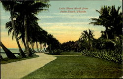Lake Shore North From Palm Beach