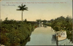 View On Miami River