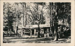 Pine Grove Resort Postcard