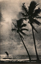 Sunset & Palms By the Sea-Shore, Ceylon