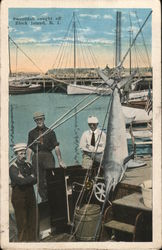 Swordfish Caught off Block Island