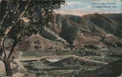 Bird's Eye View of Gold Links on Catalina Island