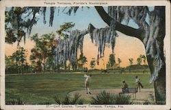 Golf Course, Temple Terraces Postcard