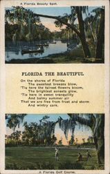 A Florida Beauty Spot