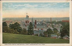 Bird'e Eye View of New Britain From Walnut Hill Park