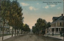Chestnut Street, Looking North