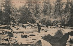 Trout Fishing on Little River