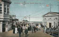 Boardwalk Above Moorlyn Terrace Postcard