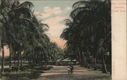Palm Avenue, Cristobal, Canal Zone