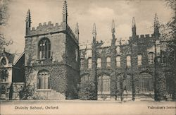 View of Divinity School Postcard