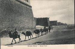 Grosse Mauer - Great Wall, Camels