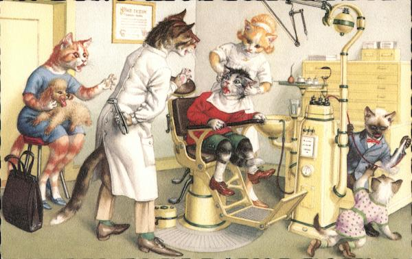 Cats at the Dentist's Office.
