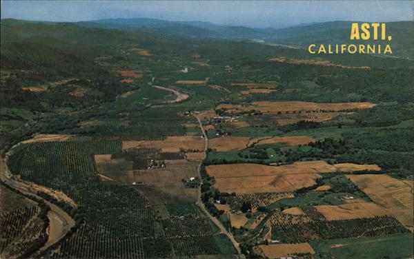 Aerial View of the Heart of Redwood Wine Country - Noted for it's beautiful vineyards Asti California