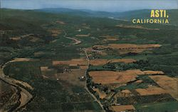 Aerial View of the Heart of Redwood Wine Country - Noted for it's beautiful vineyards