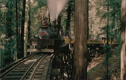 Historic Roaring Camp & Big Trees Narrow-Gauge Railroad Steam Locomotive Dixiana Shay