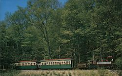Woodland Museum Train Postcard