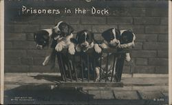 Prisoners in the Dock
