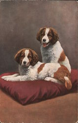 Two Spaniels on a Cushion