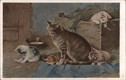 Mother Cat with Kittens in the Hay