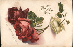 Red and White Roses - Best Wishes