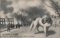 Without a Home: Chelsea Conflagration, April 12, 1908