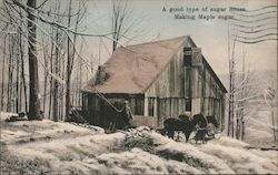 A Good Type of Sugar House Making Maple Sugar