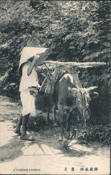 A Korean farmer