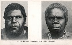 The Last of the Tasmanians
