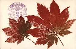 "Two red leaves, ""in commemoration of visit to Nikko"""