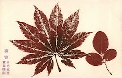 Japanese, Impression of a Leaf