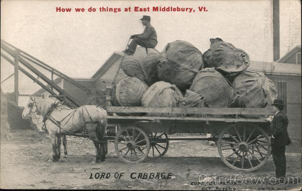 Load of Giant Cabbages East Middlebury Vermont
