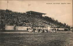 Stadium, Dill Field Postcard