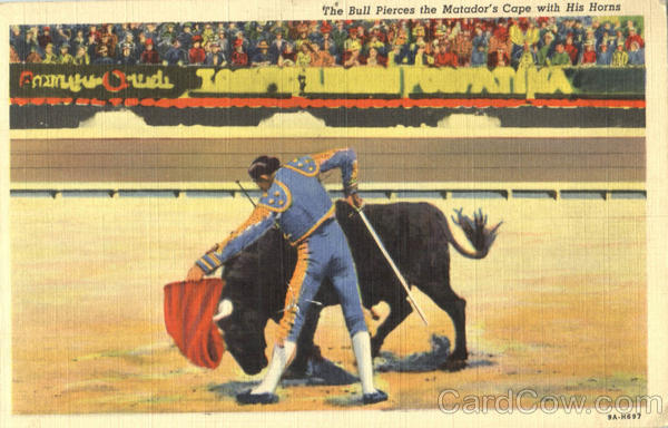 The Bull Pierces The Matador's Cape With His Horns Mexico