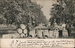Orchard Workers at St Joe Postcard