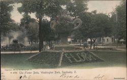 The Flower Beds, Washington Park