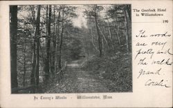 The Greylock Hotel, In Torrey's Woods