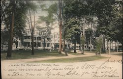 The Maplewood