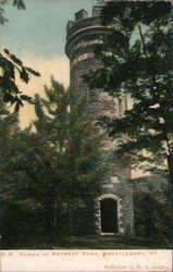 Tower in Retreat Park