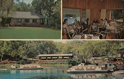 Rainbow Springs Postcard