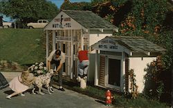 Mut-Tel - The Visiting Dogs Hotel - Florida's Cypress Garden Postcard
