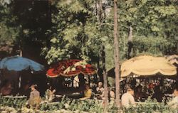 The Patio near Buffet - Hoberg's Among the Pines Postcard