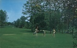 The 9th Green and Fairway at The Franklin Lodge and Golf Course
