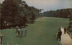 Golfing on a Beautiful Course Postcard