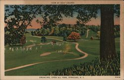View of Golf Course, Drumlins, Open All Year Postcard