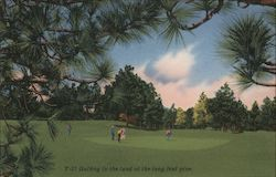 Golfing in the Land of the Long Leaf Pine. Postcard