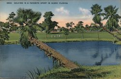 Golfing is a favorite sport in sunny Florida Postcard