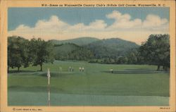 Scene on Waynesville Country Club's 18 hole Golf Course Postcard